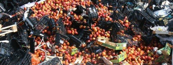 уничтожение персики