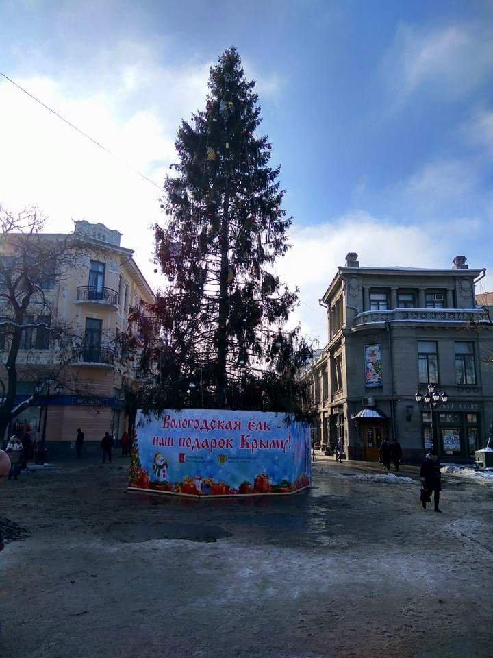 елка в симфе