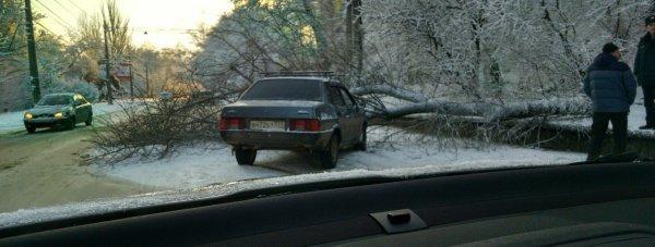 машина дерево гололед