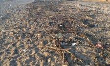 люимовка пляж 2