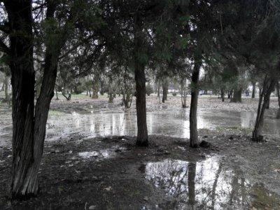 парк гагарин1