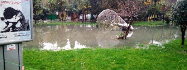 ялта потоп