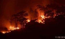 пожар_ялта2