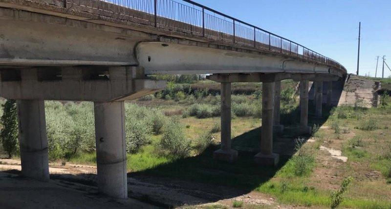 Северо-Крымский канал зарастает деревьями