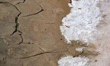 сакская грязь
